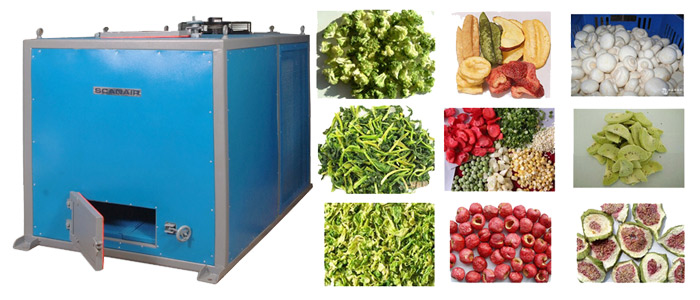 Seed Dryer Chennai